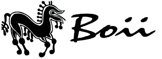 Boii - logo sdružení