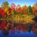 Léto končí, začíná podzim i počasí bude podzimní