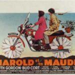 Filmový klub – Harold a Maude