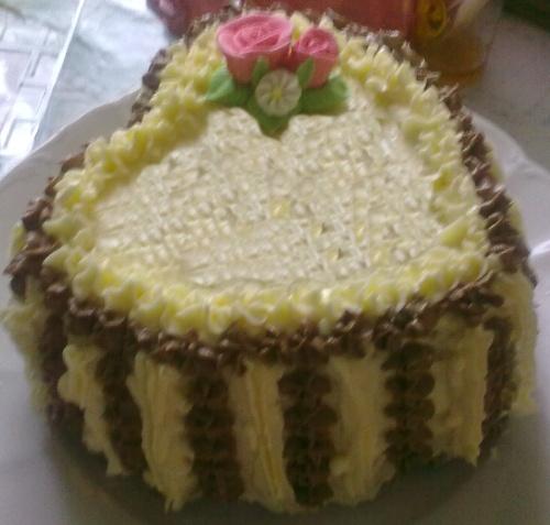 dort pro zamilované
