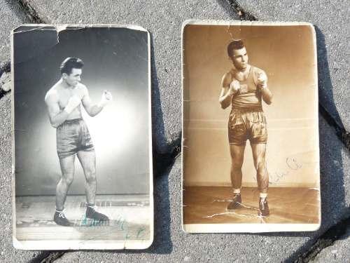 Boxer za mlada