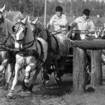 Mezinárodní závody spřežení – Rudolfův pohár
