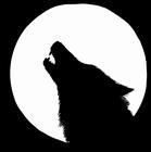 Rytíři černého vlka