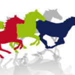 Koně v akci