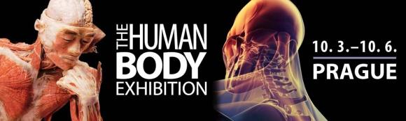 Prodloužení výstavy The Human Body do 17. června