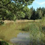 Cyklovýlet – Slavickou oborou