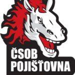 Pardubice vydřely bod v Brně