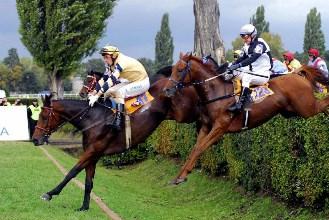 Na dostihový svátek se chystají nejen koně a žokejové
