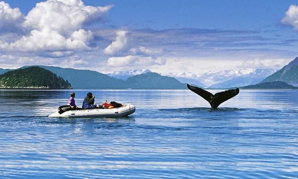 Na člunech panenskou přírodou Severní Ameriky