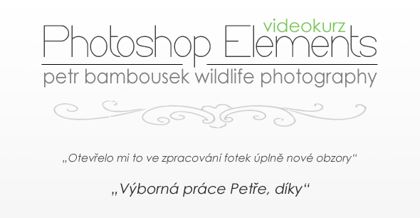 Soutěž o Videokurz Photoshop Elements