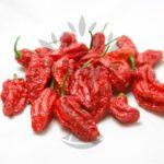 Soutěž o balíčky semínek chilli papriček