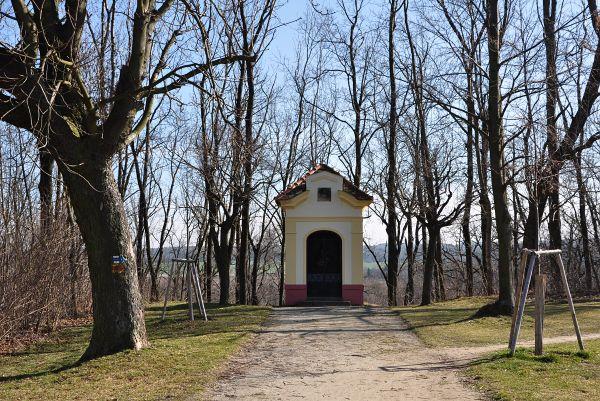 Seriál - Staré a památné stromy Chrudimska VII. - Lipové aleje