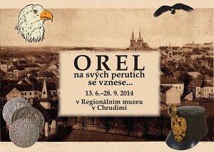 Orel na svých perutích se vznese v Regionálním muzeu v Chrudimi