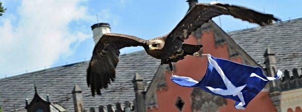 Soutěž o vstupenky na Skotské hry do Sychrova