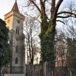 Seriál – Staré a památné stromy Chrudimska XIV. – Jasany