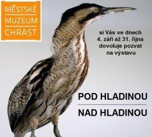 Příroda v Chrasteckém muzeu