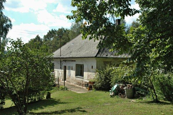 Jilm habrolistý v Přemilově u Horního Bradla