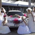 Inspirace pro snoubence a jejich rodiny nabídne 11. svatební veletrh v Pardubicích