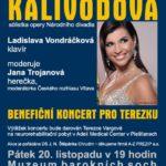 Benefiční koncert pro Terezku – zazpívá Andrea Tögel Kalivodová