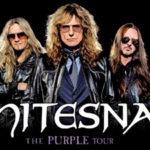 Již příští týden zasyčí v Praze legendární skupina Whitesnake