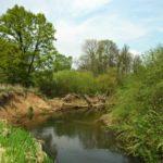Jarní přírodou podél Chrudimky