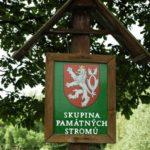 Staré a památné stromy Chrudimska I.