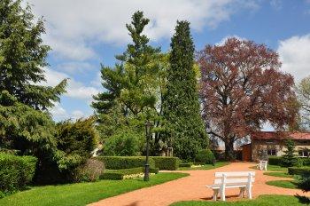 Dendrologická vycházka do zámecké zahrady v Chrasti