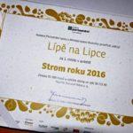 Anketu Strom roku 2016 ovládla naše lípa z Lipky na Chrudimsku