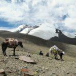 Hana Doležalová – Trek ladackými horami