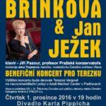 Benefiční koncert pro Terezku