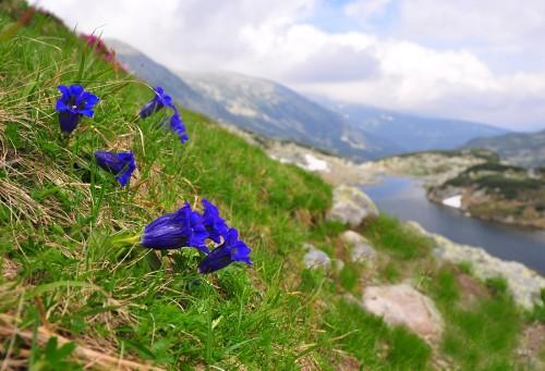 Rumunské Karpaty – cesty časem