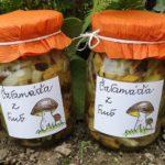 Chrudimka na houbách – Houbová čalamáda