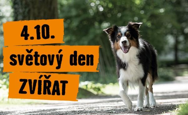 Mezinárodní den zvířat - 4. října