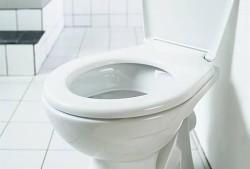 Kalendárium - Světový den toalet