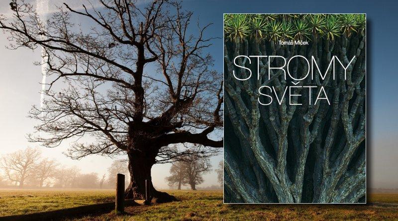 Stromy světa