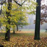 Průchod parkem Střelnice od pondělka uzavřen