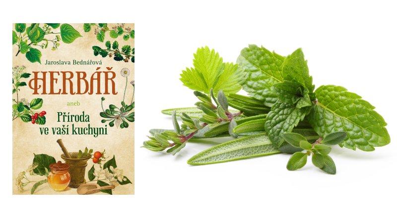Herbář aneb příroda ve vaší kuchyni