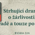 Oceňovaný román nigerijské autorky konečně i v češtině