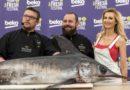Gastronomické zážitky už tento víkend na Beko Fresh festivalu vPardubicích