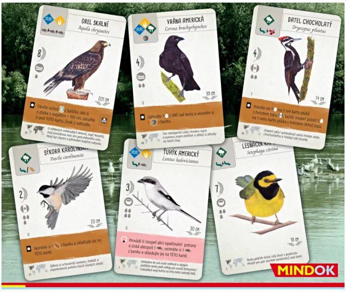 Na křídlech - karty