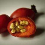 Vitamín C je přímo kouzelníkem pro naše zdraví a energii