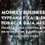 Festival v lese – to je STUDNICE FEST