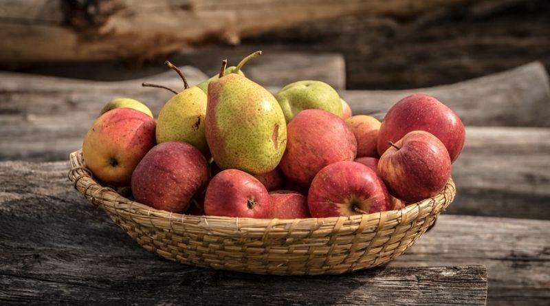 Jablkobraní (foto: Jaromír Zajíček)